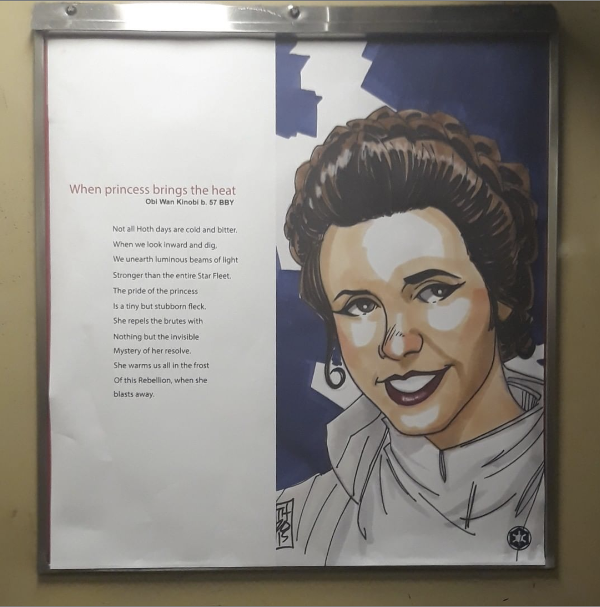 illustrational poster inside of an MTA subway cart of Princess Leia from the Star Wars films