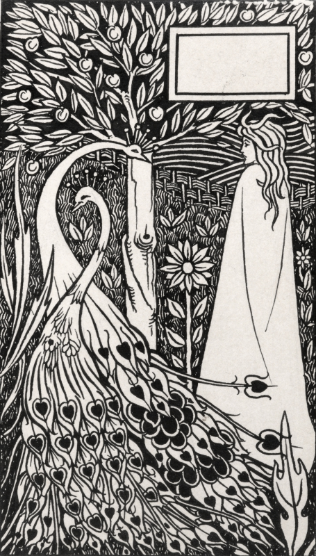 black and white illustration of a person standing next to two peacocks amongst nature