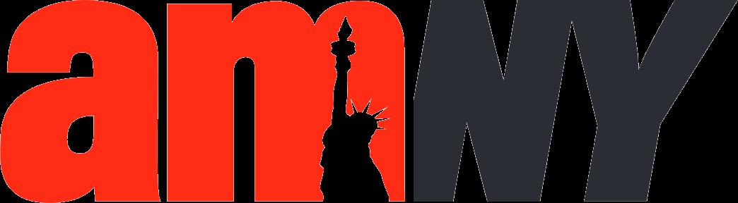 Logo for amNY