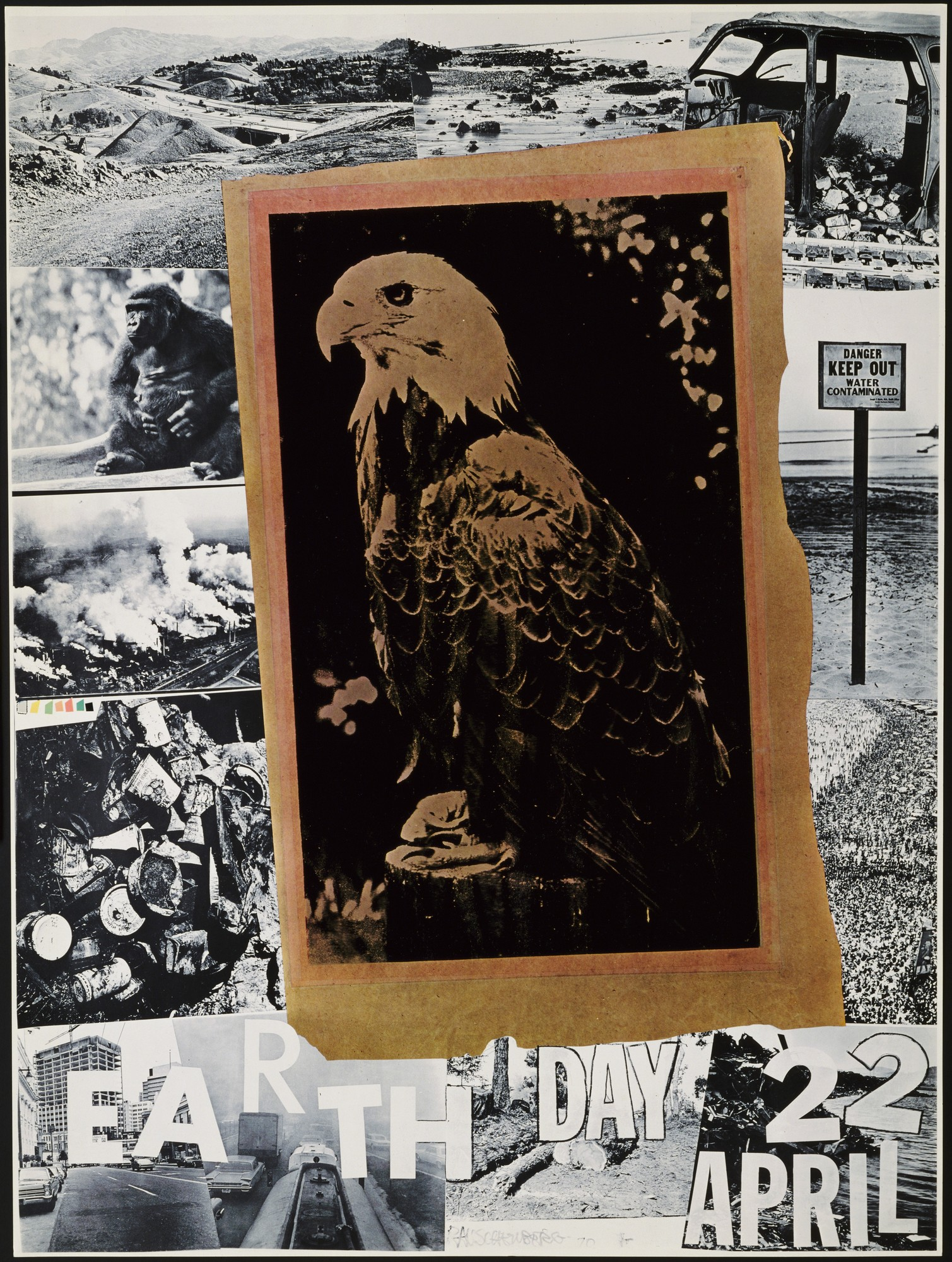 antique image of a bald eagle layered over collage of black and white images
