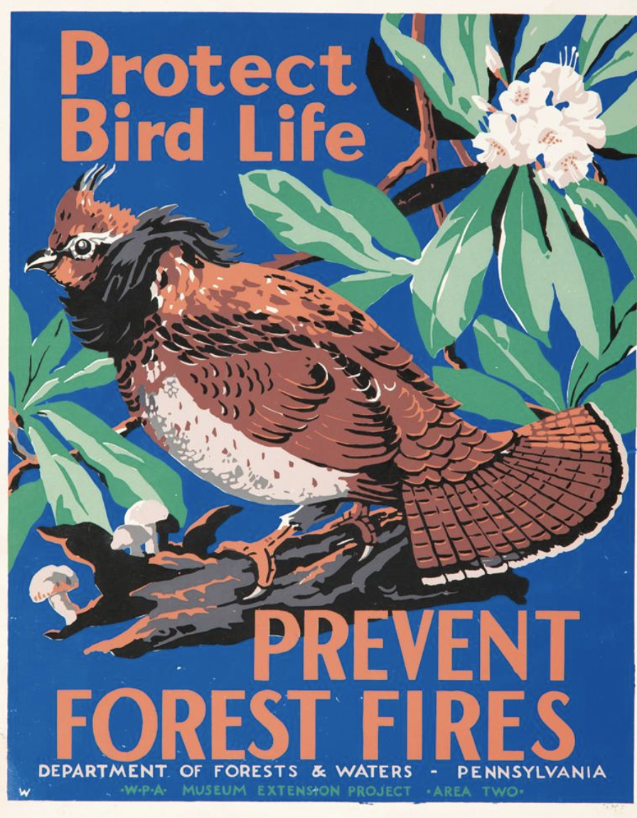 illustrational poster of a bird on a flowering branch
