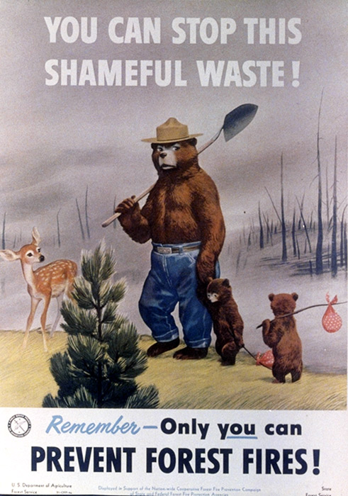 illustrational poster of a bear carrying a shovel over his shoulder as he walks with his cubs